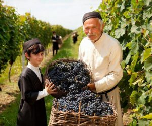 Georgia, the Cradle of Wine Civilization and the process of making wine
