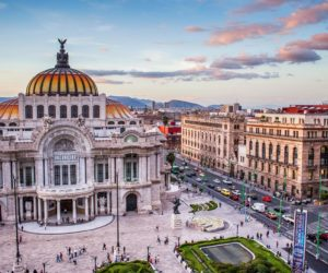 Mexico City live guided tour, through the eyes of a local expert