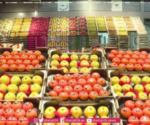 The world's biggest fresh food market opens its doors for you!
